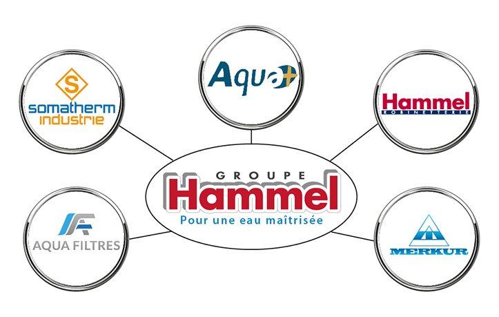 Les entreprises du Groupe Hammel